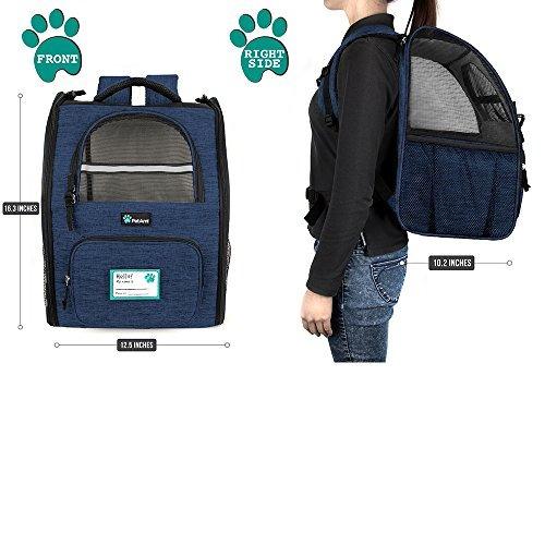 petami mochila de transporte para perros y gatos pequeños