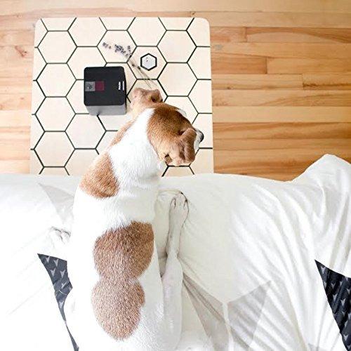 petcube interactiva wi-fi cámara de mascotas, p envío gratis