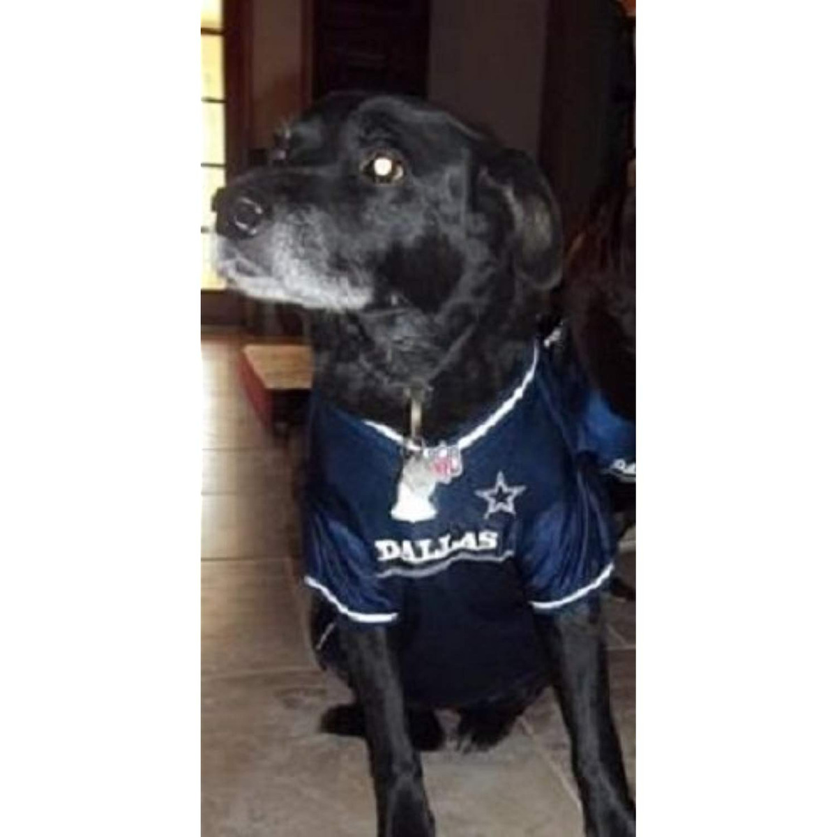 newest dd6c5 43d52 Pets First Dallas Cowboys Dog Jersey Licensed Nfl
