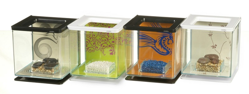 petshopbeto kit pecera pez betta diseo decoracion moderno