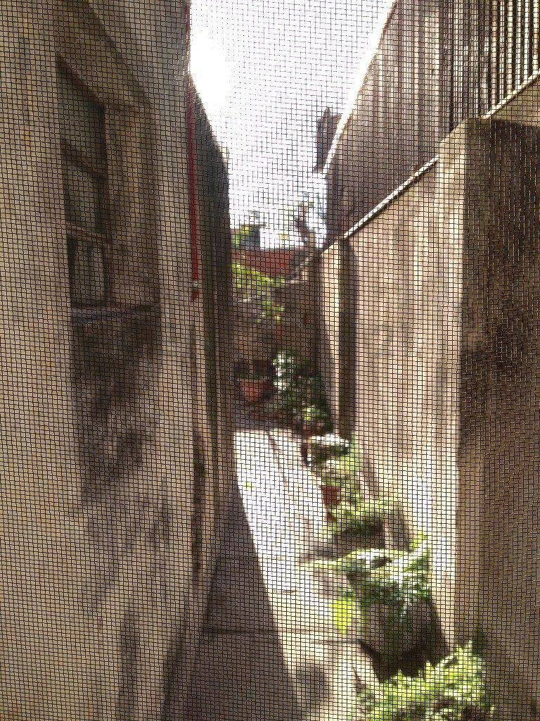 ph en p.baja  con local o garage y gran patio 193 mts2