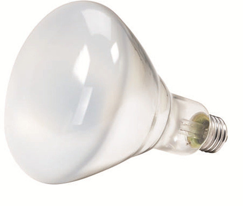 philips 387795 blanco suave 65 vatios br40 interior del bulb