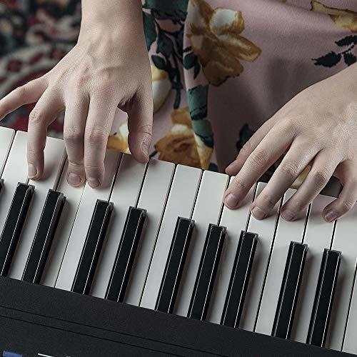 piano digital alesis recital pro de 88 teclas con teclas ham