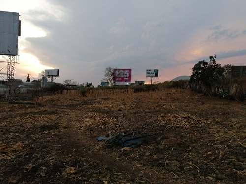 pie de autopista a un costado de harley davidson y gasoliner
