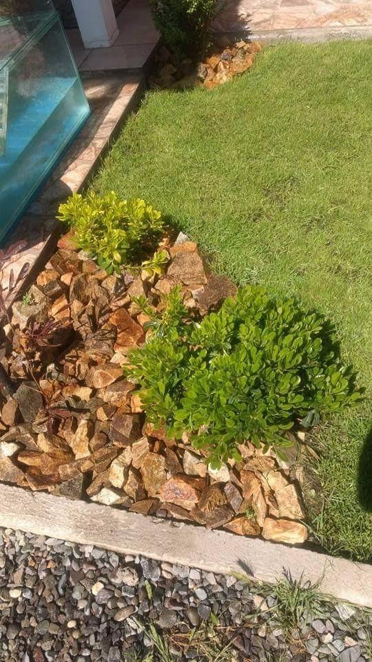piedra decorativa para jardines fuentes de agua y terrazas piedra decorativa jardin - Piedra Decorativa Jardin