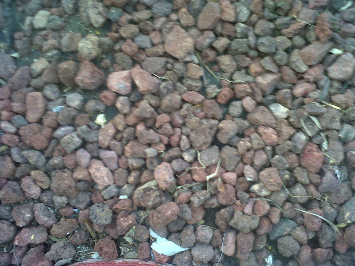 Piedra volc nica en mercado libre for Piedra volcanica para jardin