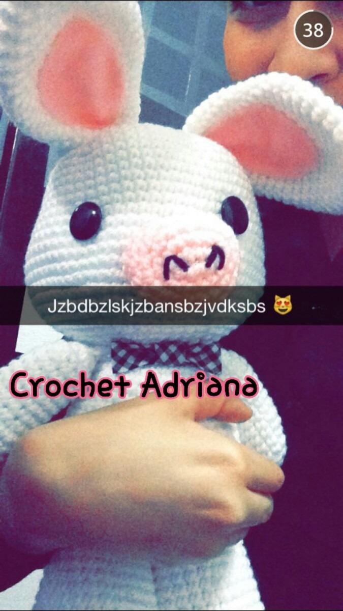 Amigurumi Pig Rabbit : Pig Rabbit O Cerdo Conejo Amigurumi Envio Gratis - USD 750 ...