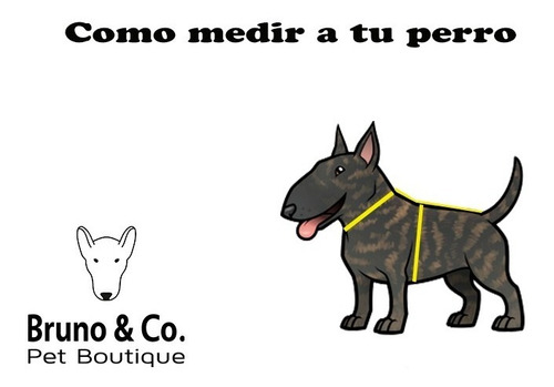 piloto impermeable para perros con capucha (large)