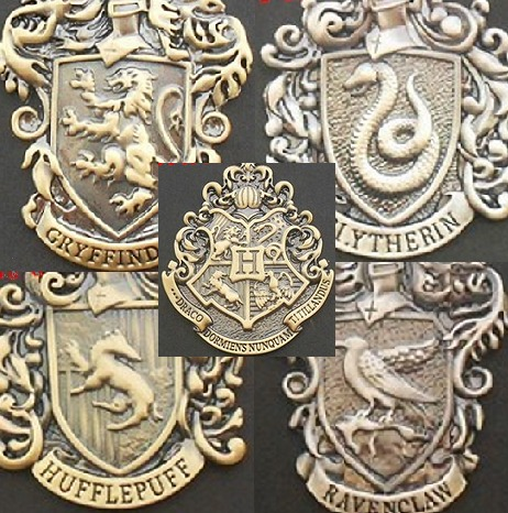 Pin Broche Harry Potter Hogwarts Gryffindor Slytherin