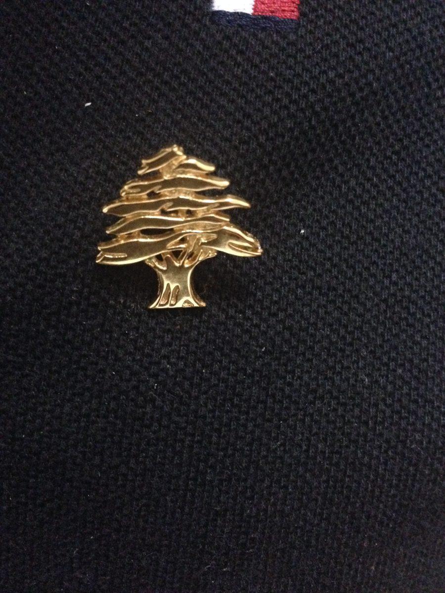 Pin Cedro De Libano De Plata Con Ba O De Oro De 14 K