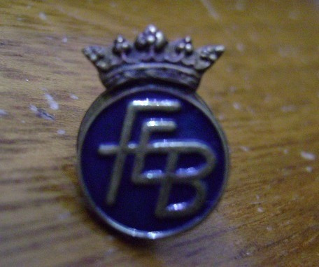 pin federacion de box española