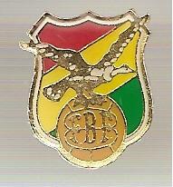 pin futebol federação bolivia  fbf
