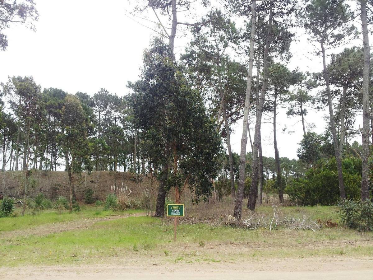 pinamar, lote barrio alamos ii