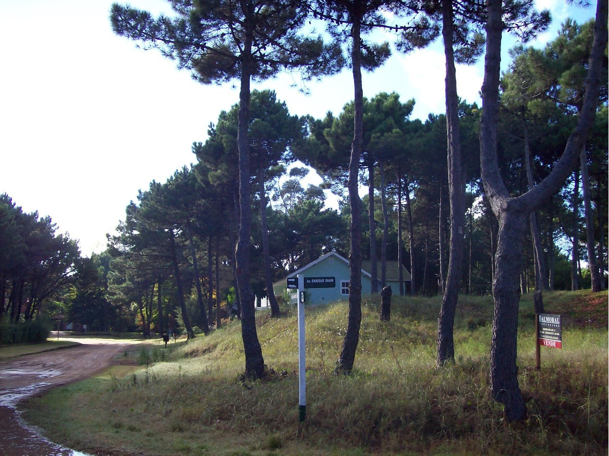pinamar norte , norte tennis ranch