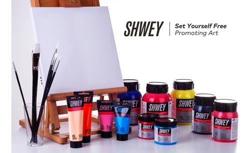 pinceles artisticos profesional shwey punta redonda set x 6