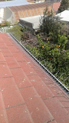 pinchos para palomas púas antipalomas 1mts galvanizado