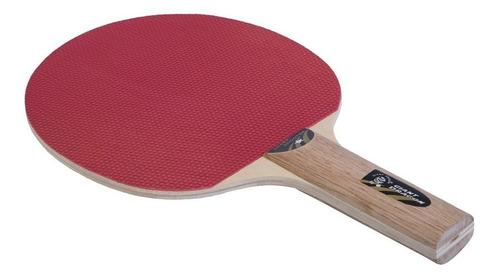 ping pong paleta