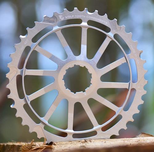 piñon de 40 dientes para bicicleta