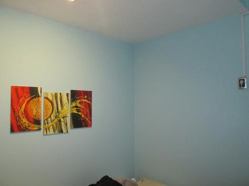 pintor profesional. casas, aptos, rejas, fachadas, aberturas