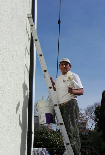 pintor profesional, casas, empresas,oficinas
