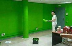 pintor profesional economico ...