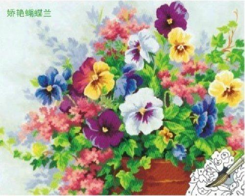 pintura al óleo diy, pintura por número -kit hermosa phalaen