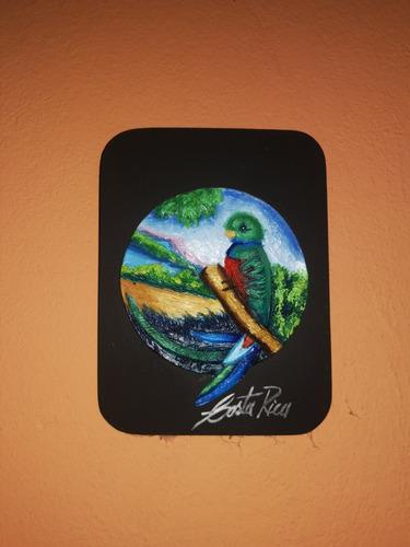 pintura arte aves costa rica