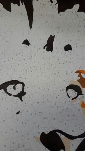 pintura con tela para pintar por numeros como profesional