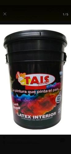 pintura / enduido / pincel /rodillo y sellador