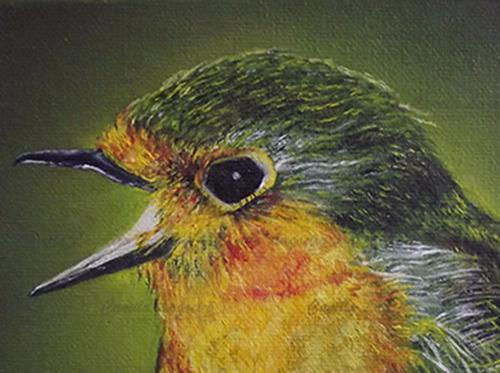 pintura hiper-realista passarinho