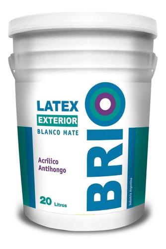 pintura latex interior exterior brio andina antihongo 20lt