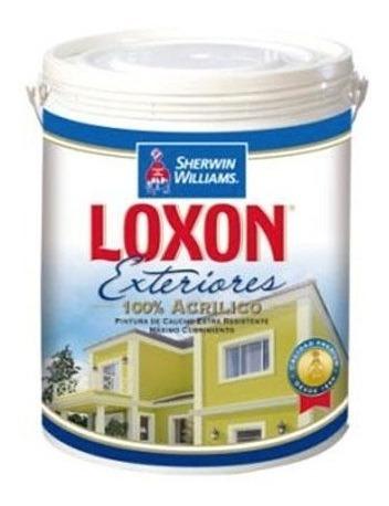 pintura para exterior clase a loxon s.w, galon blanco