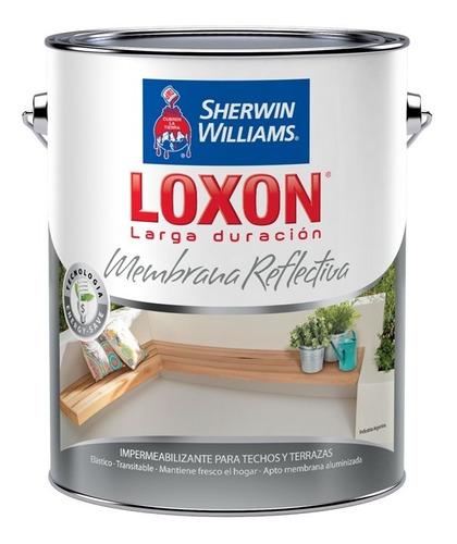 pintura sherwin williams loxon ld membrana en pasta 25 kg