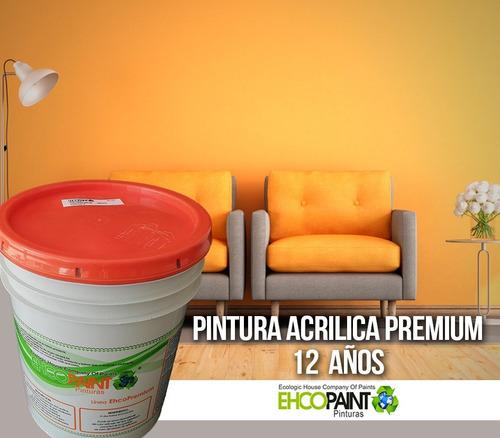 pintura vinilica acrilica  100% lavable 10 a 12 años  19 lts