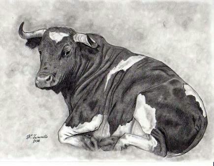 pinturas al oleo toros.cuadros para sala hogar.