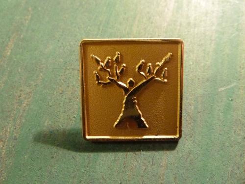 piocha árbol - vp