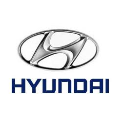 piola acelerador hyundai h100 diesel 97/