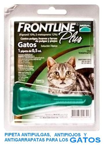 pipeta antipulga piojos frontline plus 0.5ml - gato grande