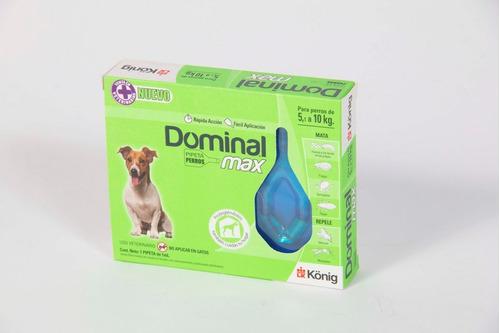 pipeta dominal max para perros de 5-10 kg
