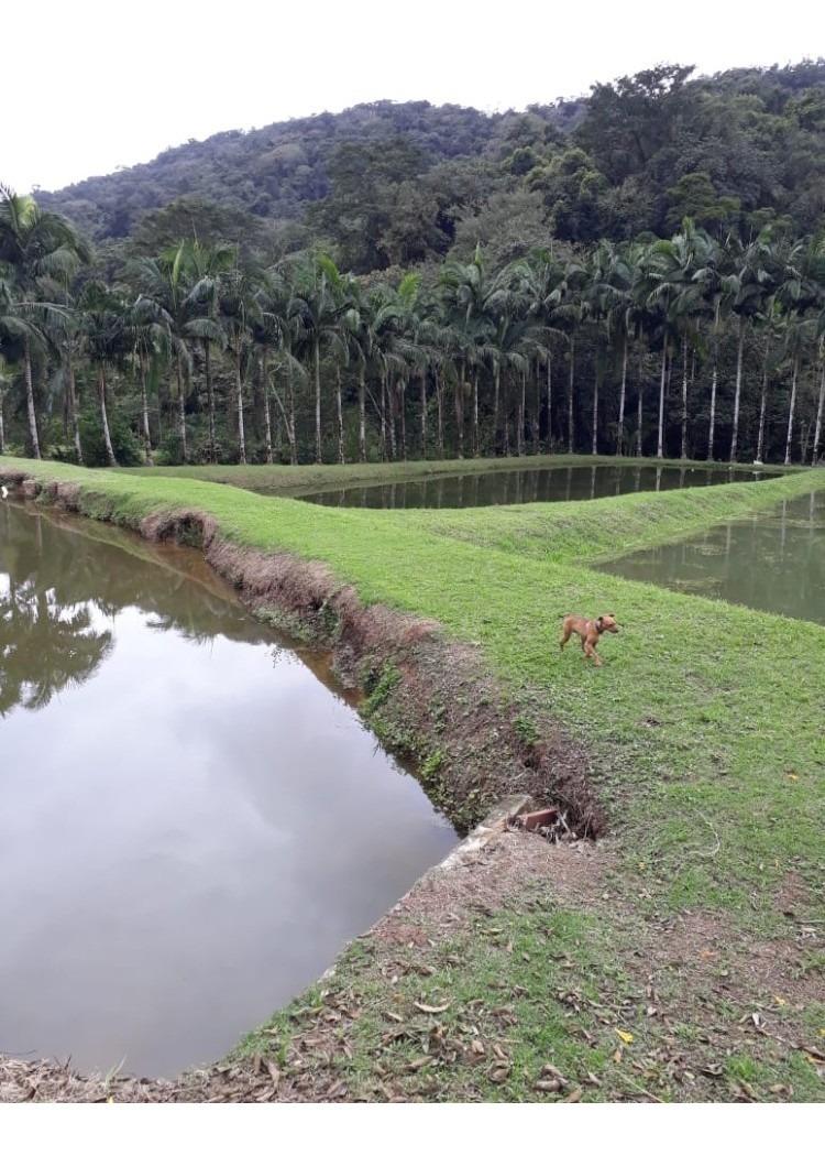 piscicultura
