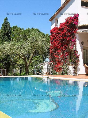 piscinas de hormigon!!! las mas alta calidad!! 6*3 $80.000