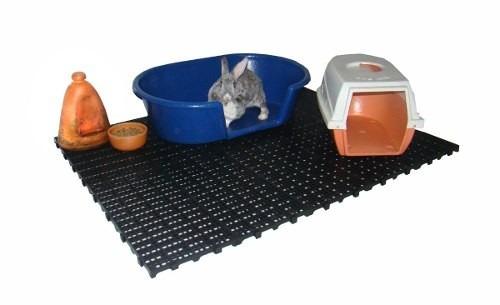piso plástico pallet palete puro para câmara fria  pet shop