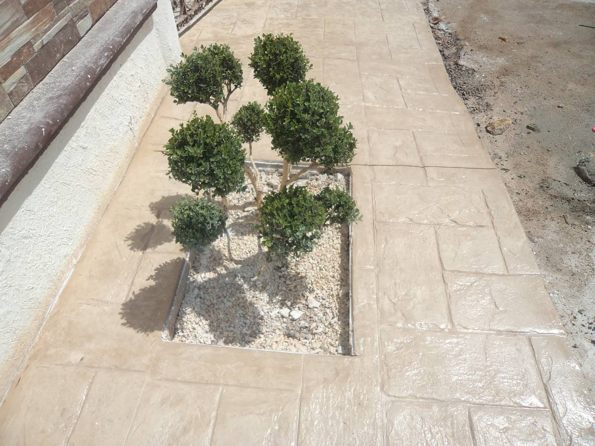 Pisos de concreto estampado en mercado libre for Pisos para escaleras de concreto