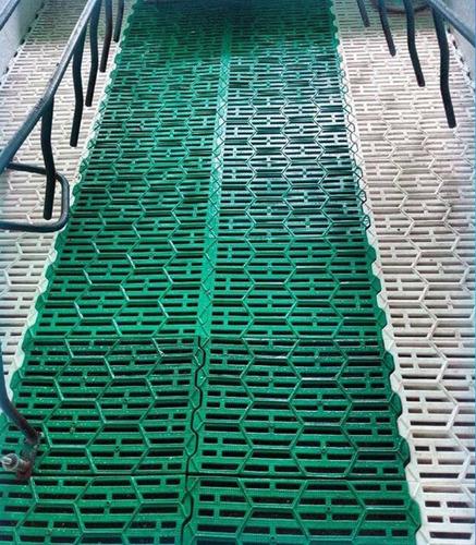 pisos plasticos para cerdos medidas 60x40 cm