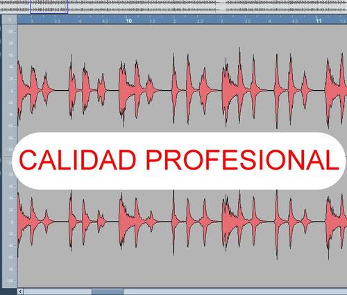 pistas musicales en multitrack audio 120 pesos cada una
