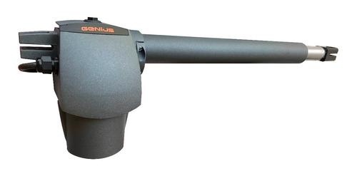 pistones g-bat 300 con chapa italiana faac e instalación