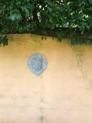 placa cabeca de leao para jardins e fontes - grande concreto