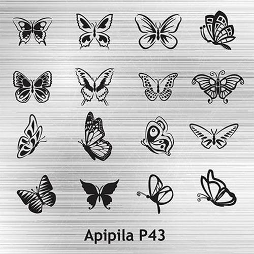 placa carimbo unhas apipila apipila p43