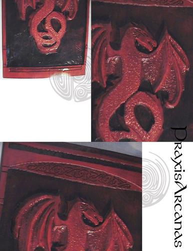 placa de dragon