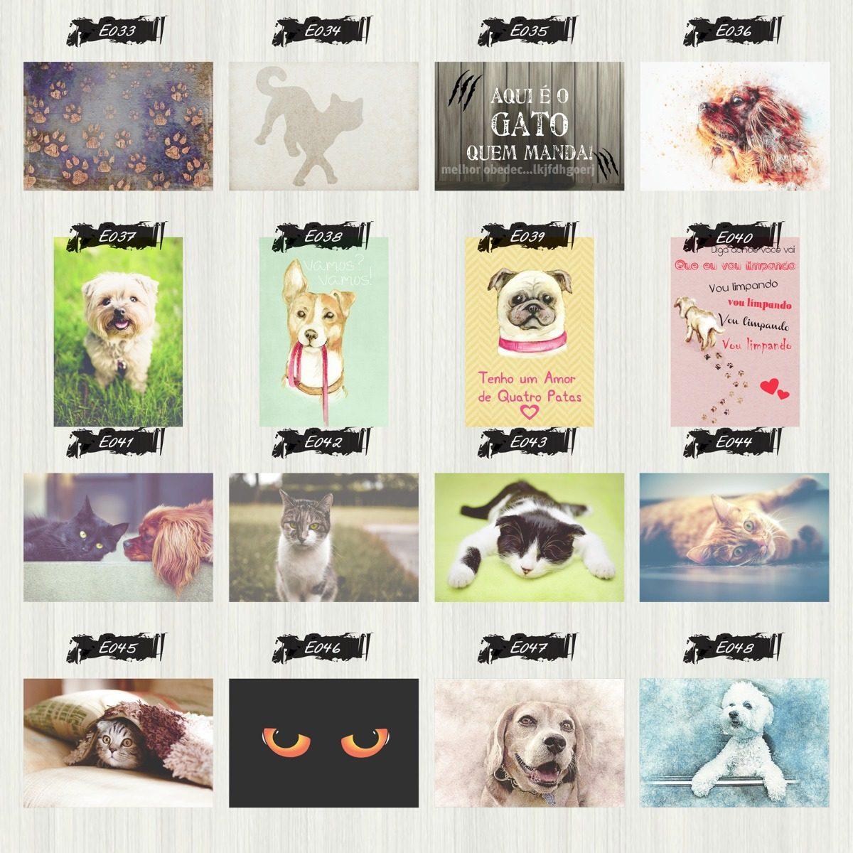 Placa Decorativa Frases Animais Gato Cachorro Estimação Pet